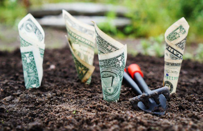 TransStock Geïnvesteerd kapitaal