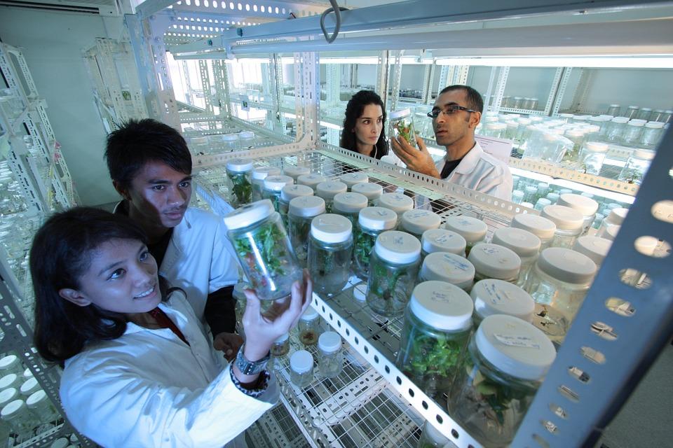 Innovatief beleggen: De Bio-Sector